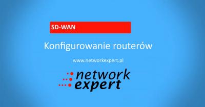 Cisco SD-WAN - Konfiguracja Routerów