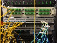 Wdrożenie sieci bezprzewodowej i przewodowej dla JMP Flowers